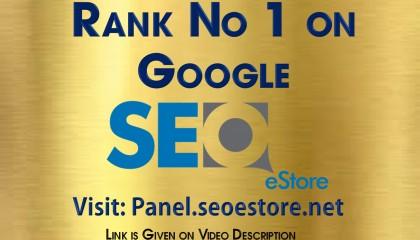 SEOeStore - Rank No1 On Google