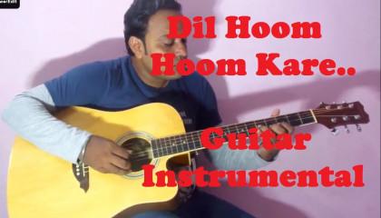 Dil Hoom Hoom Kare  || Rudaali || Guitar Instrumental