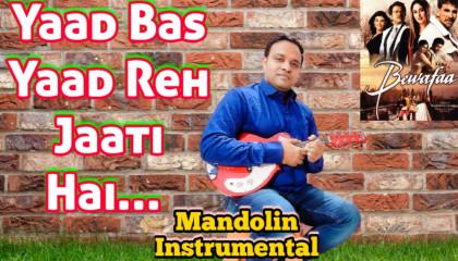 Yaad Bas Yaad Reh Jaati Hai   Bewafaa   Mandoline Instrumental