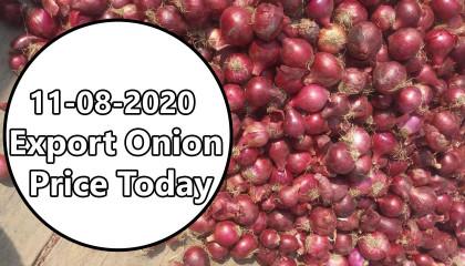 Export Onion Price | onion price today | onion export price in india