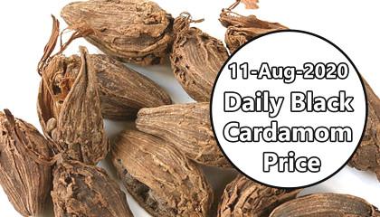 siliguri cardamom price | badi elaichi price | Black Cardamom Price