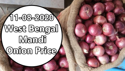onion price today | west bengal onion price | onion export price in india