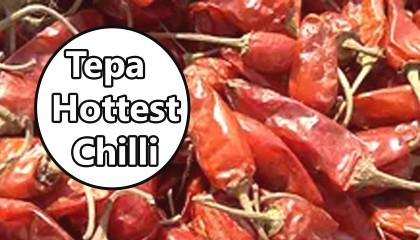 tepa red chilli | hottest chilli | bullet chilli | tepa chilli Price
