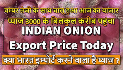 onion export price   pyaj bhav today   कांदा बाजार भाव   onion export price