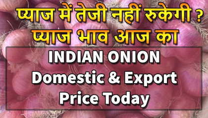 प्याज का भाव   india onion price   nashik onion market   onion export price