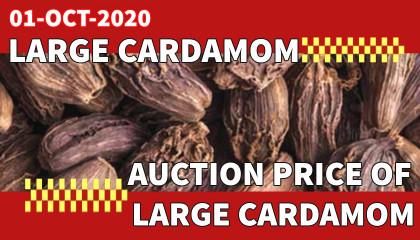 large cardamom auction price | black cardamom auction price | large cardamom price in siliguri