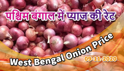jalpaiguri onion price | west bengal onion price today |  पश्चिम बंगाल में प्याज की रेट