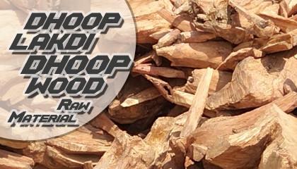 dhoop wood dhoop lakdi dhoop wood tree dhoop lakdi price dhoop tree wood dhup ka ped