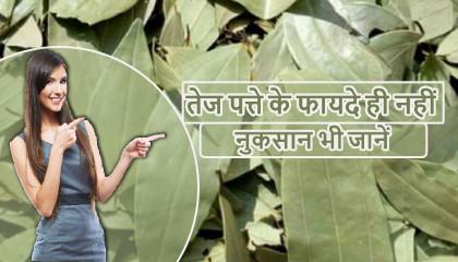 तेजपत्ता के फायदे  तेजपत्ता के नुकसान  Side effects of tej patta  How To Use Bay Leaf