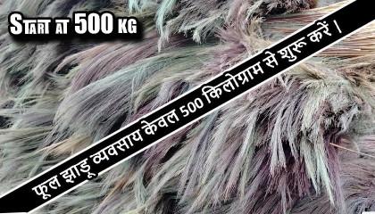broom grass price  broom raw material price  phool jhadu