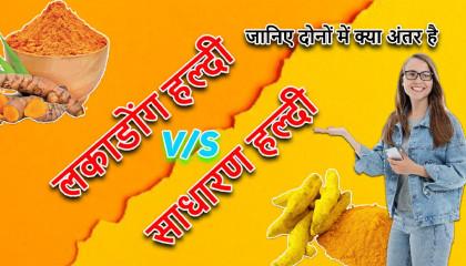 लकाडोंग हल्दी और साधारण हल्दी में क्या अंतर है जानिए हिंदी में
