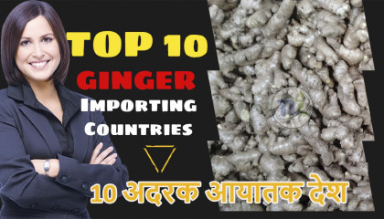 ginger export  Import of Ginger  ginger exporting countries