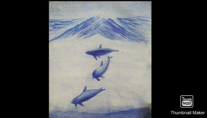 dolphins 🐬 painting