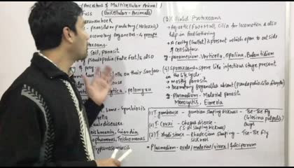 Protista(4)-Protozoans(Amoeboid,Ciliated,flagellated & Sporozoans)