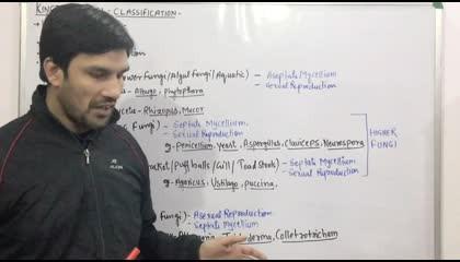 Kingdom Fungi(Part:4)-Classification 12th & NEET Standard