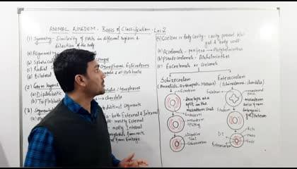 Animal kingdom(Part:2)-Body Symmetry,Coelom,Metamerism & Germ Layers