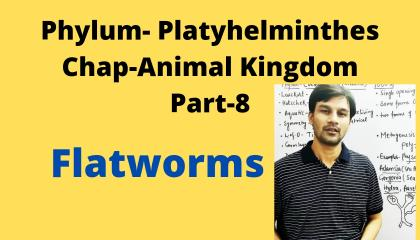 Animal Kingdom Part-8(Phylum- Platyhelminthes)