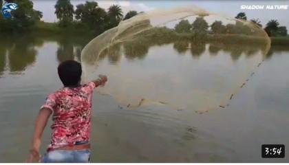 Best Cast net fishing.Traditional Cast Net fishing in village .Cast Net Fishing
