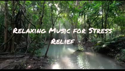 Meditation music for Stress Relief in 5 minutes