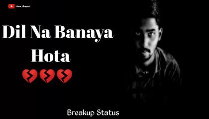 Dil Na Banaya Hota / Breakup Shayari Status / Sad Whatsaap Status / Hindi Shayari