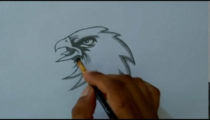 How to draw An Eagle Step By Step  Eagle Drawing With Pencil Drawing Flying Eagles