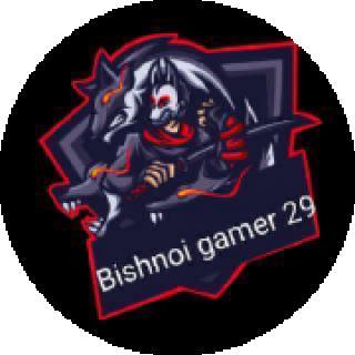 gamer boy 29