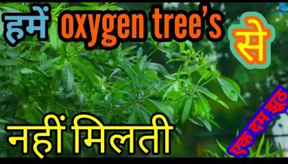 हमें oxygen tree se milti hai ye jhut hain/IN short