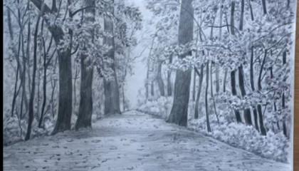 Drawing Jungle Scenery