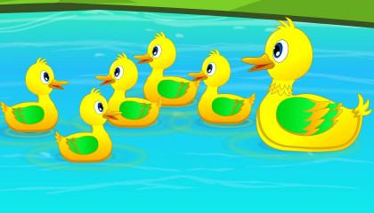 Five Little Ducks  Kindergarten Nursery Rhymes For Kids  Videos For Babies