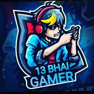 13 BHAI GAMER