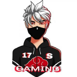17S Gaming