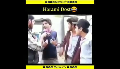 harami _friends_best_funny _whatsapp stutas_kameena_dosti