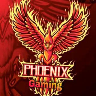 Phoenixgaming
