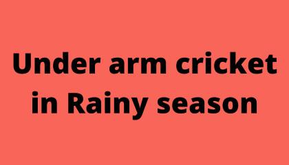 Under arm cricket 🏏 in Rainy season.
