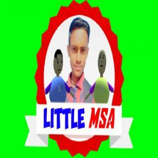 Little MSA