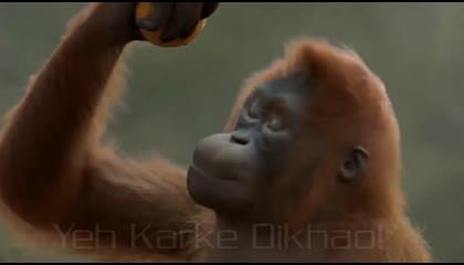 yeh karke dikhao /vivekkumar online motivational video and knowledge