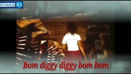 Bom Diggy Diggy (Remix) Dj Appu