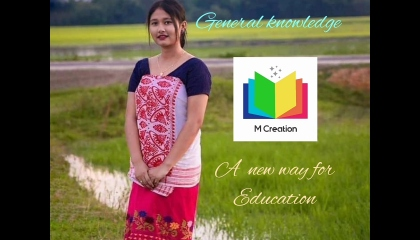 Education video /general knowledge video /m creation education