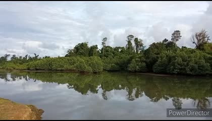 Andaman lovely nature