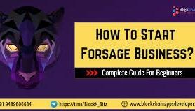 forsage business plan explain