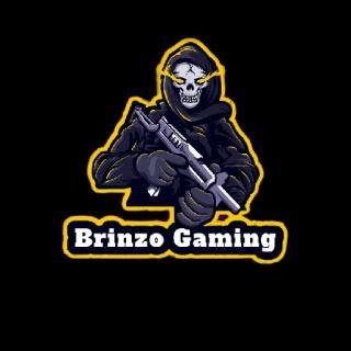 Brinzo gamerz