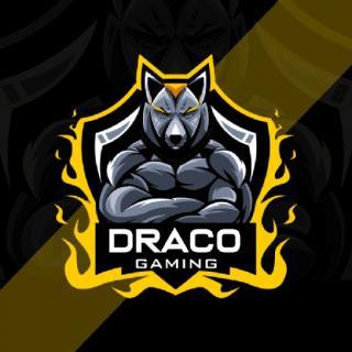 DRACO GAMING