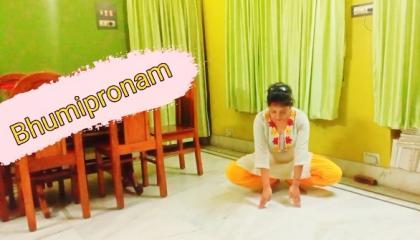 Bhumipronam
