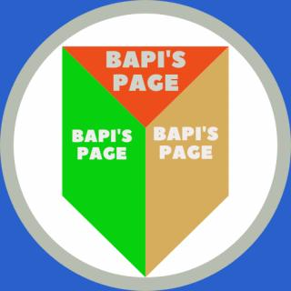 BAPI'S PAGE