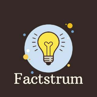 Factstrum