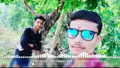 Panchi Sur Mein Gaate Hindi Love Remix Dj Anil Bhai