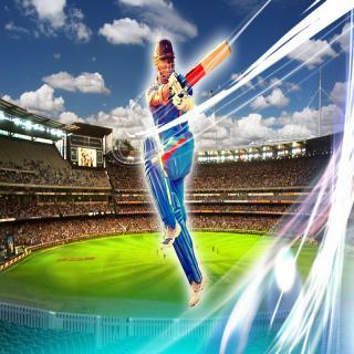 Elegant Cricket