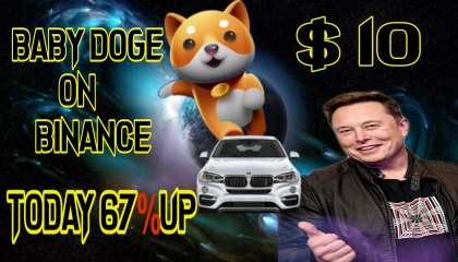 Baby doge new update in hindi / baby doge price predidiction